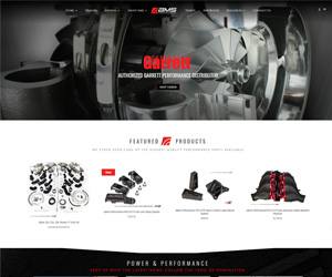 AMS Performance Website Design
