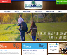 Orchard Road Animal Hospital Website Design