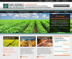 Soy Capital AG Website Design