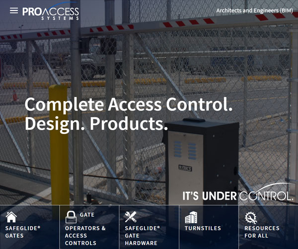 ProAccess Systems Website Design